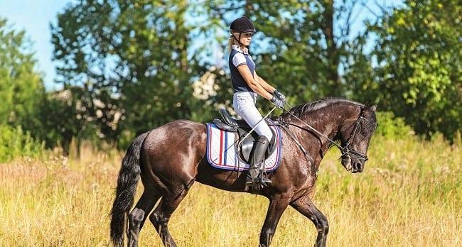 Dunalastair-Hotel-Blair-Castle-International-Horse-Trials-