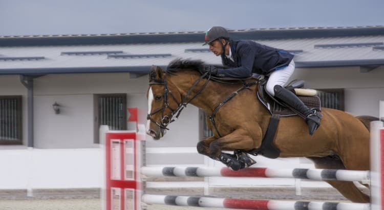 Blair-Horse-Trails